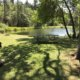 Picnic area by pond
